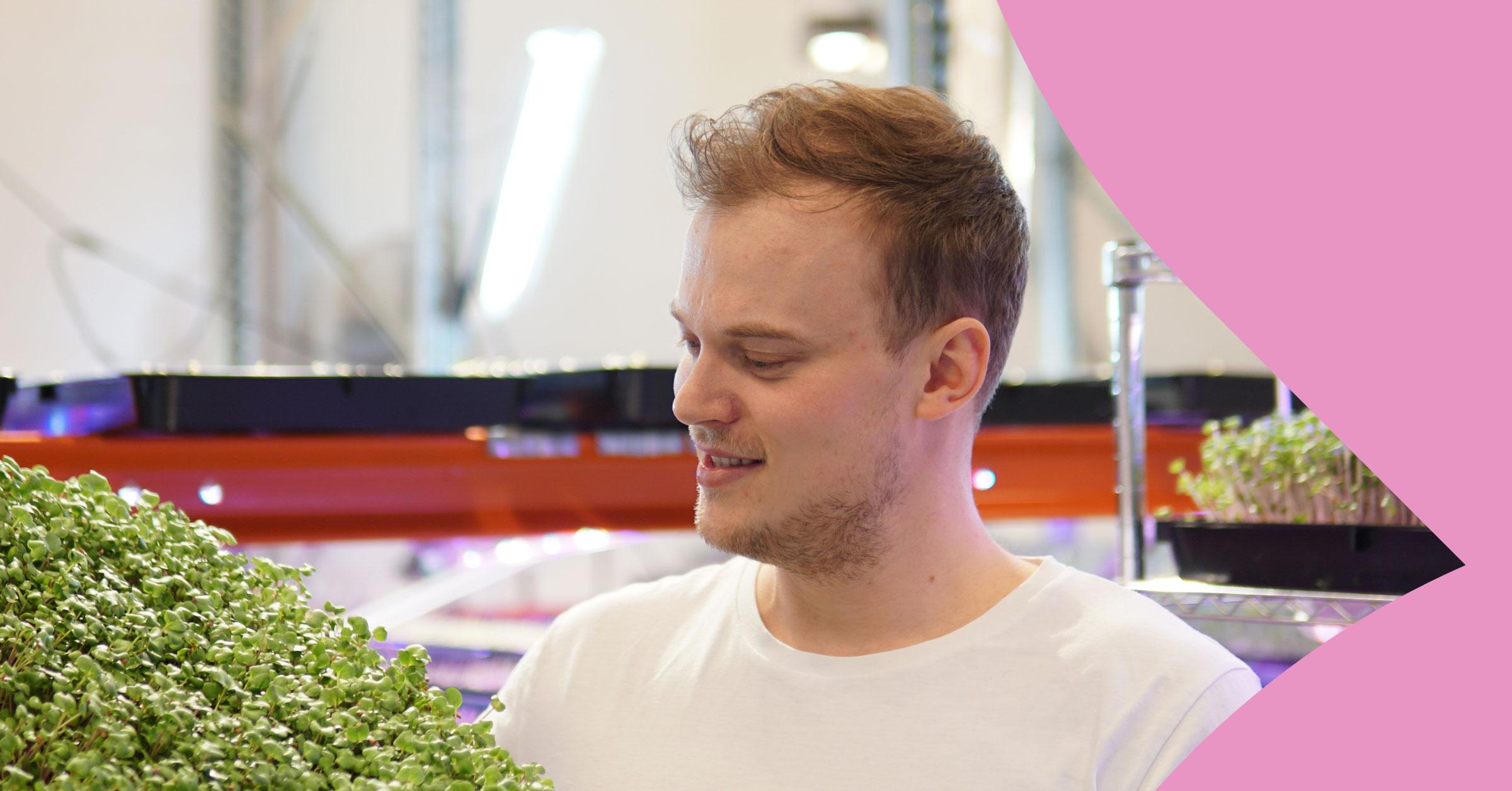 Ralf Holmborg viljelee salaattia.